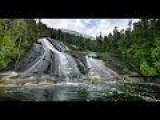 Exploring Great Bear Rain Forest
