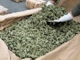 Federal Hearing Could Lead To The End Of Prohibition