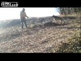Fur Trapper Finds A Wolf Caught In A Leghold