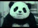 Funny Cheese Panda Commercials