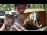 Forging An Elephant Head Railroad Spike Knife