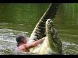Fisherman And 17ft Crocodile Best Friends !!