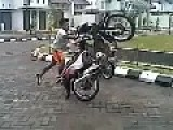 Funny Motorcycle Accident - Only In Indonesia