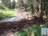 Flash Flood Rushes Down River