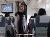 Flight Attendant Fantasy