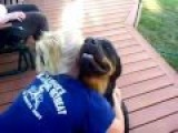 Funny Videos 2014 : Women Are Calming The Purring Dog