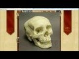 Fairly Fresh Human Skull Show's Up In Goodwill Donation