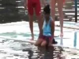 Funny Video Of Horny Dolphin Best Funny Video - Fun