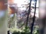 Family Escapes Wildfire In Glacier National Park In Dramatic Video