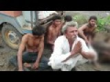 Four Low Caste Youth Whipped For Possessing Beef