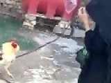 Feisty Cock Gets The Better Of Old Woman