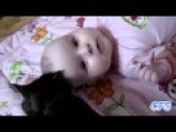 Funny Cat And Baby