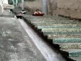 Favela Roller Coaster