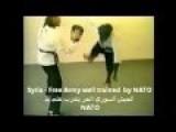 Fsa Commander Training Martial Arts