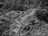 First World War - Verdun, Mud, Desertion, Mutiny, Armistice