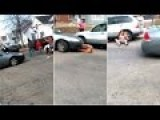 FUNNY VID--ANGRY BLACK GETS RUN OVER BUT IS UNFAZED