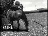 Farm Horses Issue Title Pathe Pictorial Looks At Man's Best Friend 1947