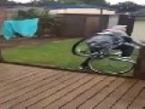Guy Falls Down Stairs On Bike