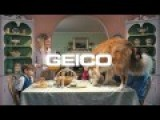 Geico Commercial - Dog Eats From Table Pretty Damn Funny