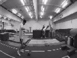 Guy Catches Ball While Bouncing On Trampoline