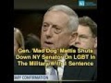 Gen. 'Mad Dog' Mattis Shuts Down NY Senator On LGBT In The Military With One Sentence