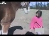 Horse Shows Girl Who's Boss