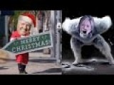 "Hilarious Trump Christmas Parody ""It's The Most Wonderful Time In 8 Years"" - Dana Kamide"