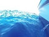 Humpback Whale Noises Recorded Off Hawaiian Coast