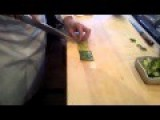 How A Sushi Master Chef Slices A Cucumber