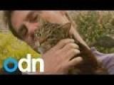 Hero Cat Returns The Favor- Rescues Owner