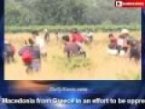 Hordes Of Aliens Rush Macedonia Border