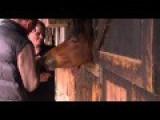 Horse Eats Microphone