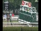Horse Racing 2014