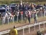 Horse Looses More Than The Race