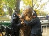 How Many Ukrainian Nazi Stormtroopers Does It Take To Wrestle One Chewbacca?