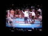 Harlem Shake Boxing Edition