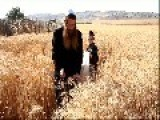 Hasidic Jewish Men Work In The Field