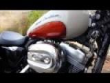 Harley Shake