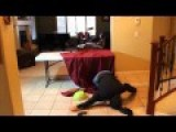 How To Do The Dubstep Dance Drop