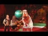 Hippo's In A Russian Circus - Supposedly, Not Forced To Entertain