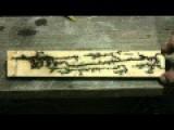 High Voltage Wood Burning