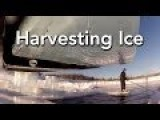 Harvesting Ice: From The Ice Point-of-view