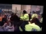 Horse Punch After Football Match Derby Newcastle Sunderland