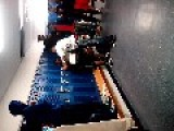 High School Fight
