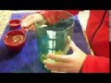 How To Make A Mosquito Trap !