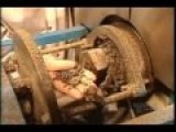 How It's Made, Vegetable Oil