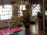 Hula Hooper Spins Around Multiple Hoops