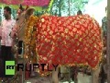 India: Two Cows Say 'I Moo' As They Enter Arranged Wedded Bliss