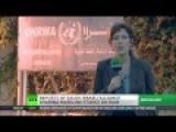 Israel, Saudi Arabia Alliance To Take Down Iran And Syria