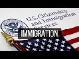 Immigration In The U.S. Short 1946 Docu